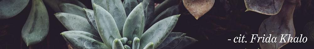 immagine rettangolare con piante sullo sfondo e cit in basso a destra