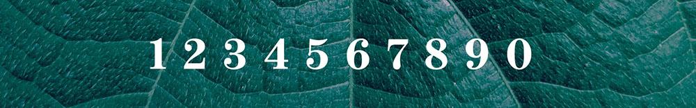 immagine rettangolare con numeri e sfondo con piante